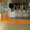 friesland_campina_olympisch_hardloopbaan