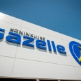 gazelle-01