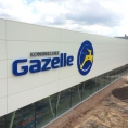 gazelle-09