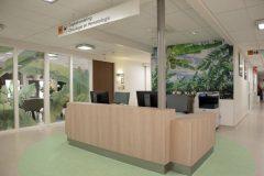 ziekenhuis-sfeerwand2