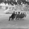 sagvfoto-1953