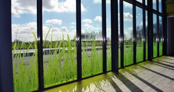 glasdecoratie Glasdecoratie voor Gemiva – SVG Groep glasfolie swetterhage 3b1 351x185