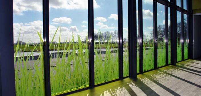glasdecoratie Glasdecoratie voor Gemiva – SVG Groep glasfolie swetterhage 3b1 702x336