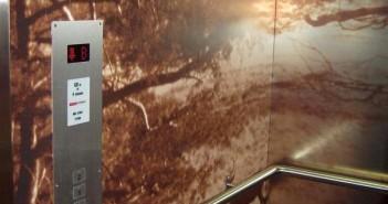 Lift voorzien van full colour afbeelding Lift voorzien van full colour afbeelding sterrenberg interieur 2 351x185